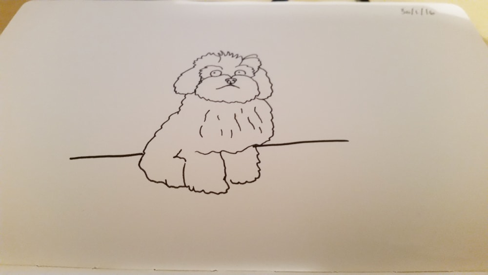 This is my dog Teddy. I would love to have him drawn! (Sharpie pen drawing)