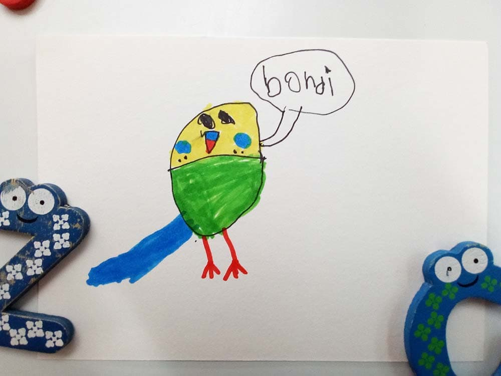 Kid's drawing of a green and yellow budgie called Bondi