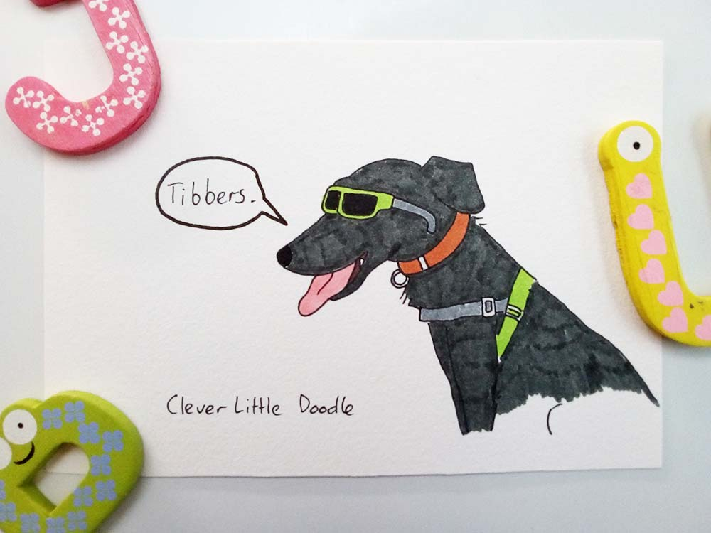 Drawing of a Kelpie X wearing children's sunglasses - coloured version