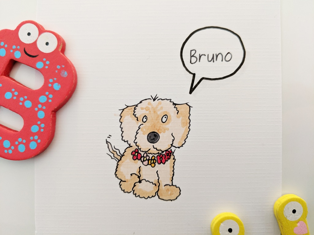 Bruno the Schnauzer x Sausage Dog - Colour Drawing