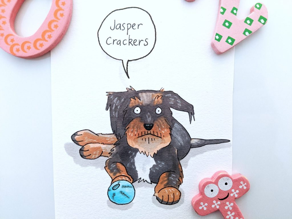 Jasper Crackers has a black coat with tan paws, muzzle and eyebrows. He's laying down looking pretty chilled with a ball at his paws..